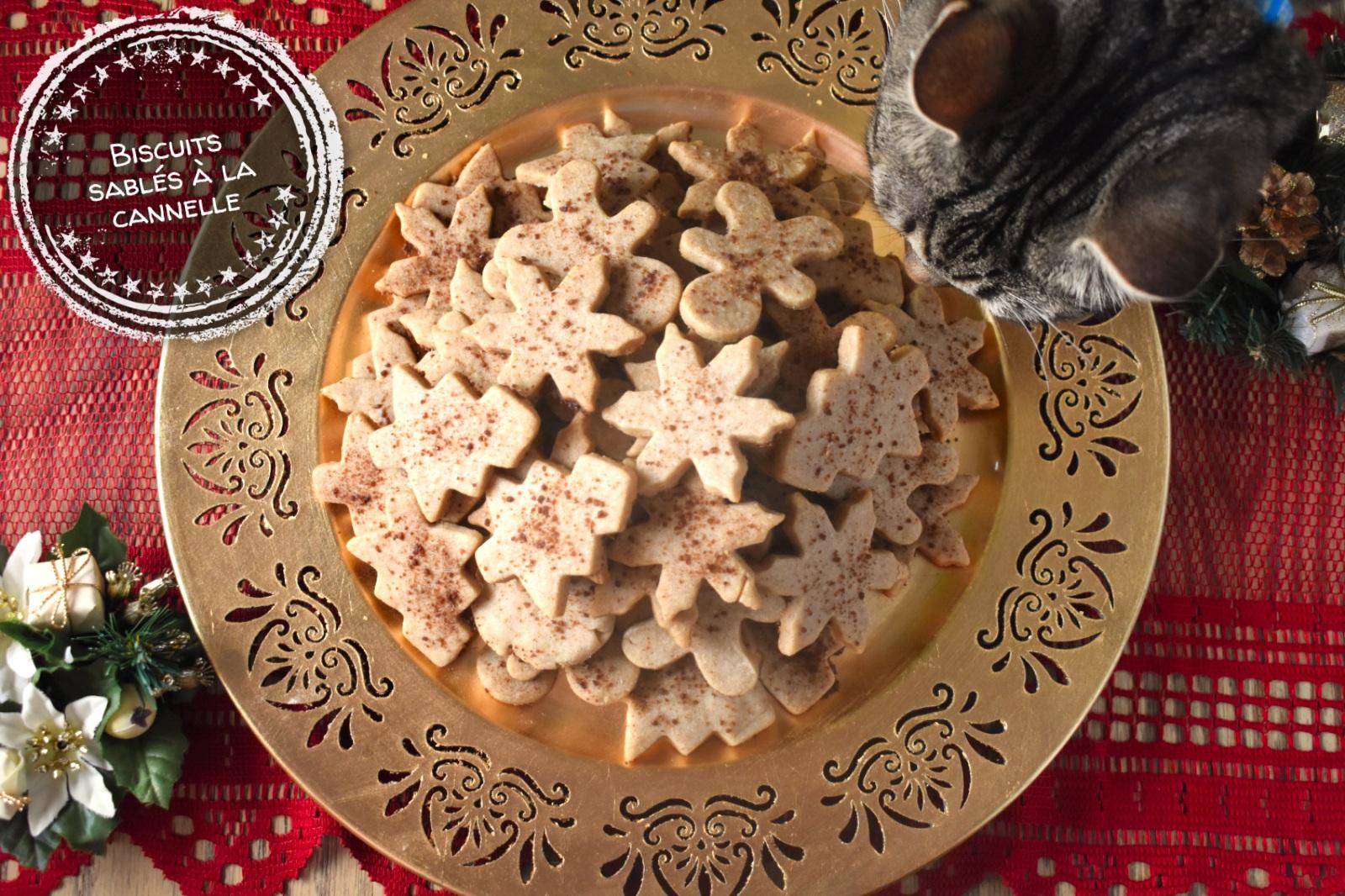 Biscuits sablés à la cannelle - Auboutdelalangue.com (10)