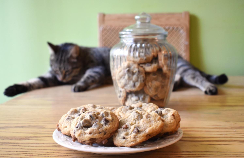 Biscuits aux brisures de chocolat et pacanes - Auboutdelalangue.com (10)