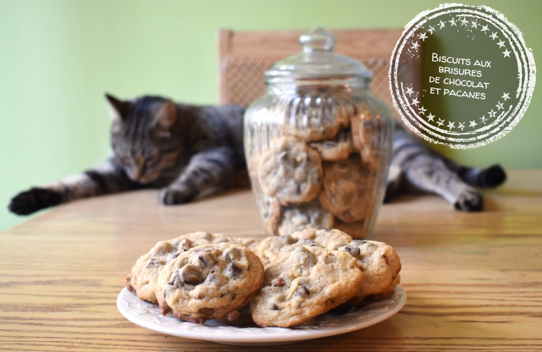 Biscuits aux brisures de chocolat et pacanes - Auboutdelalangue.com