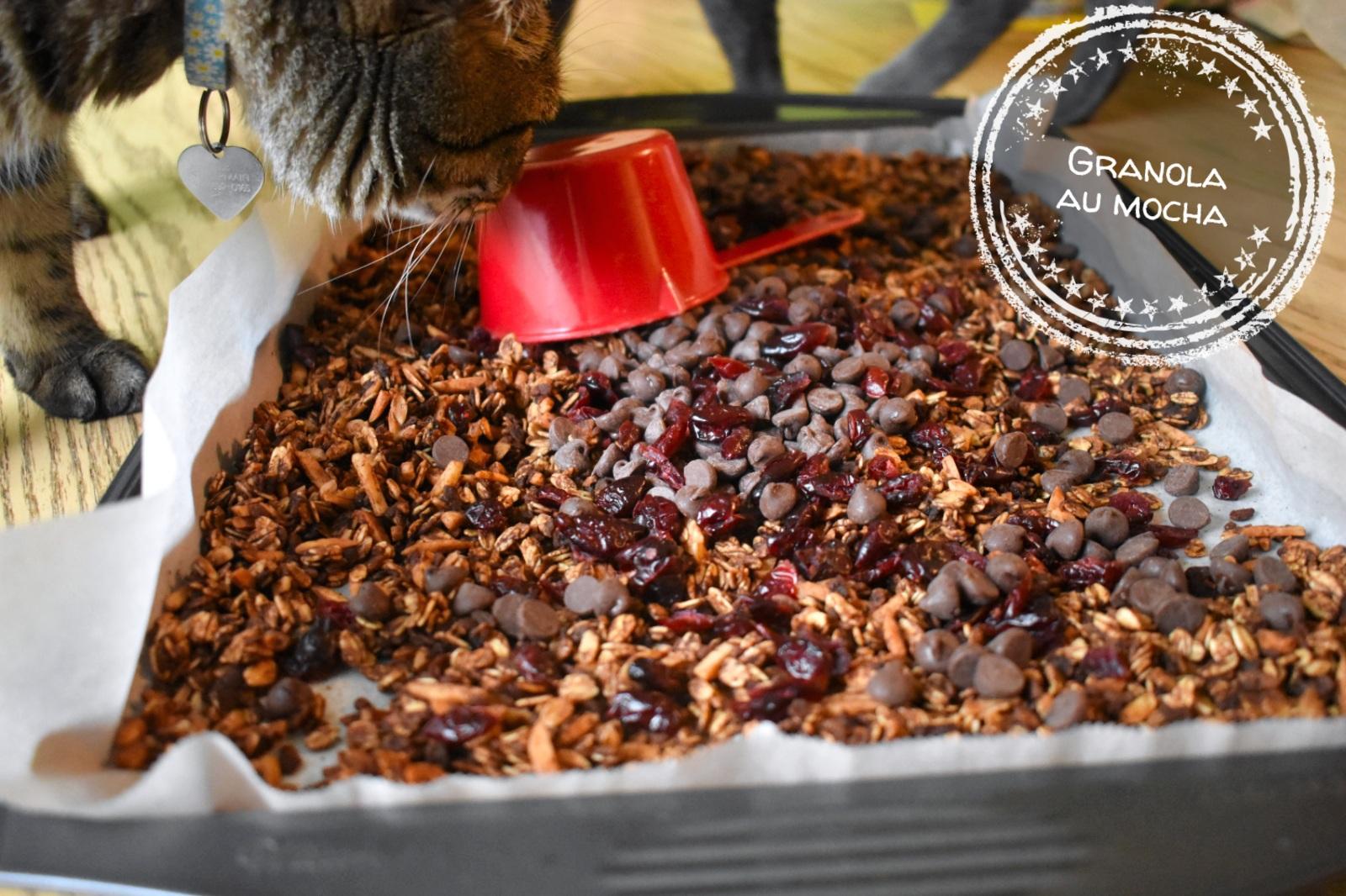 Granola au mocha - Auboutdelalangue.com (9)